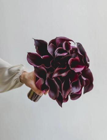 Свадебный букет из калл BLACK PLUM